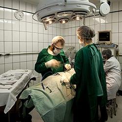 cirurgia-thumb-005.jpg