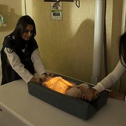 radiologia-thumb-004.jpg
