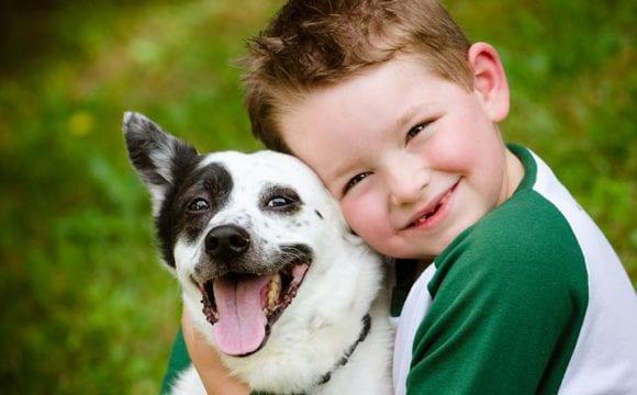 Conviver com cães fortalece o sistema imunológico da criança