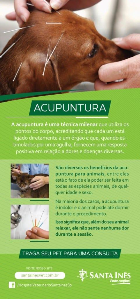 email_acupuntura_sta_ines (3)